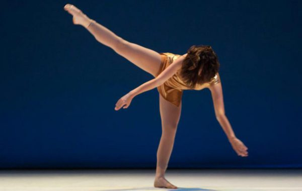 Danse Evolution