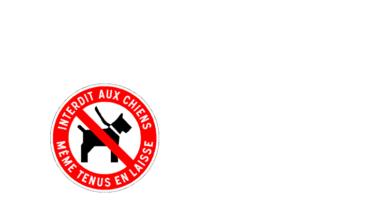 Chiens interdits aire de jeux rue Lympstone